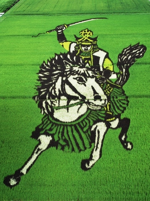 Sengoku_busho_of_rice_field_art[1].jpg